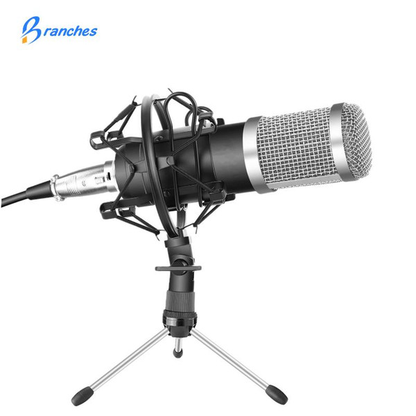 BM-800 Professional Condenser Microphone Kit:Microphone For Computer+ Mount+Foam Cap+Cable As BM 800 Microphone BM800